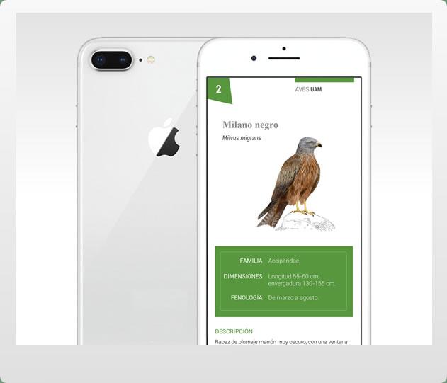 Aplicación móvil de las Aves del Retiro