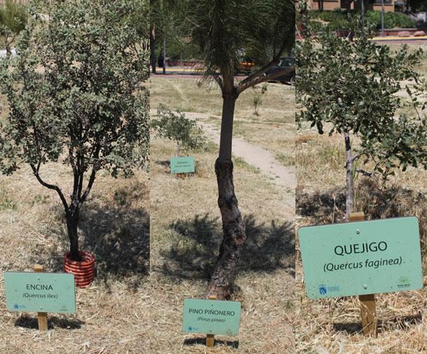 Panel Señalizacion Especie Botánica Parque Agrario Fuenlabrada BioatlasApp Grupo Heliconia