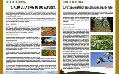 Recursos web La Toba, Guadalajara
