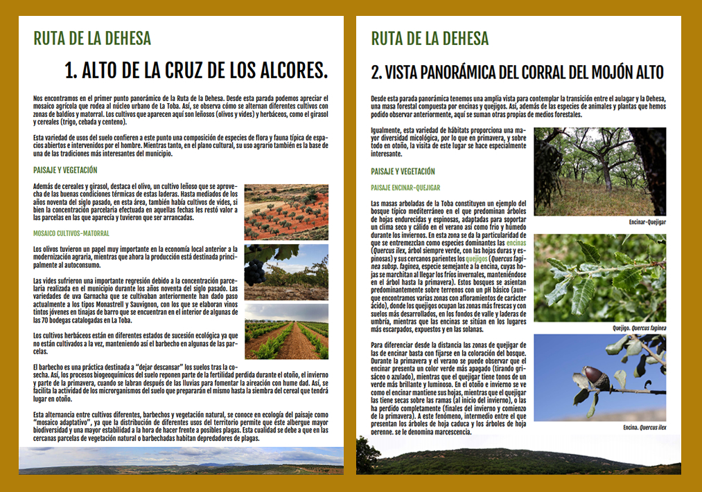 Ruta de la dehesa de La Toba Guadalajara, BioatlasApp Grupo Heliconia