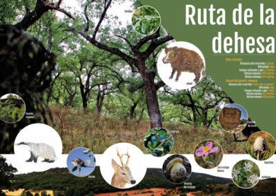 Señalizacion paneles informativos ruta-medioambiental La dehesa, La Toba, Guadalajara