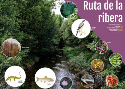 Señalizacion paneles informativos ruta-medioambiental La Ribera, La Toba, Guadalajara