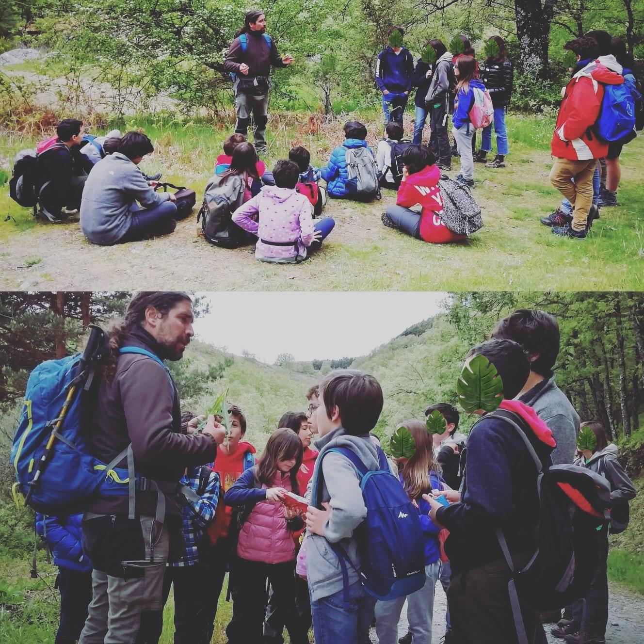 Excursiosnes a los espacios naturales cercanos